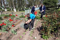 посадка цветов на памятнике