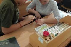 Лабораторная-работа-учащихся-8-класса-Определение-рН-среды-2