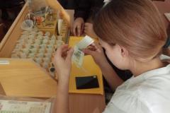 Лабораторная-работа-учащихся-8-класса-Определение-рН-среды